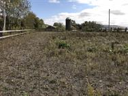 Unreserved Real Estate and Land Auction - 39775